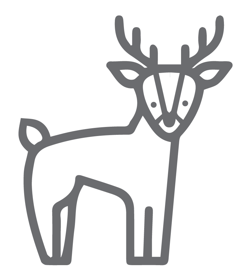 Outlined Deer Graphic
