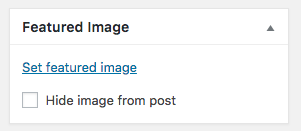 Featured Image box featuring the hide image from post checkbox